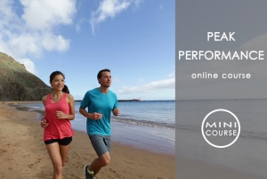 Peak Performance - WEIGHT LOSS & WELLNESS Mini Courses (MC) - Color-Code Personality-Specific Weight Loss and Wellness Strategies